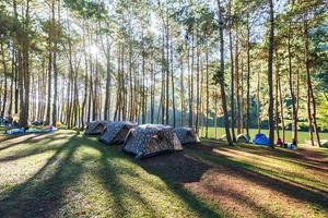 aventuras acampando e acampando pela manhã com neblina leve em pang-ung, mae hong son, tailândia foto