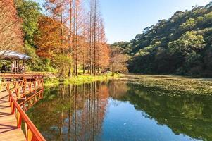 paisagem do jardim botânico de fushan em yilan, taiwan foto