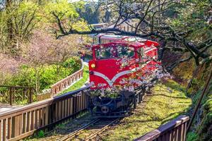 ferrovia na área de recreação da floresta de alishan, taiwan foto