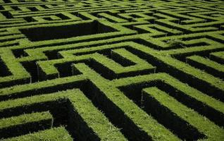 labirinto de arbustos verdes foto