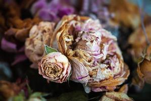 um buquê de flores secas murchas foto