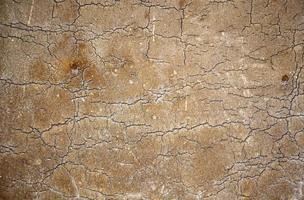 textura de madeira rachada foto
