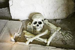 caveira e ossos foto