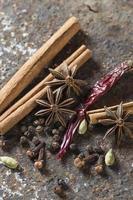 especiarias e ervas. alimentos e ingredientes da cozinha. paus de canela, estrelas de anis, pimenta preta, pimenta, cardamomo e cravo em plano de fundo texturizado foto