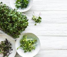 variedade de micro verdes foto