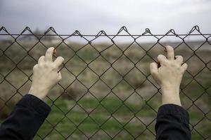 imigração de arame farpado foto