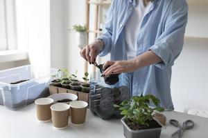 mulher tendo um jardim sustentável dentro de casa foto
