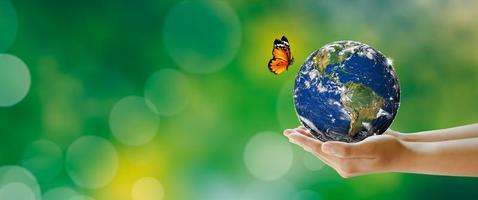 mão segurando a terra com borboleta sobre fundo verde desfocado foto