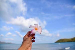 mão segurando uma flor no fundo do céu azul do mar foto