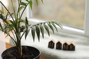 decoração de interiores home - planta de casa com letras caseiras de madeira no parapeito da janela. fundo. foco seletivo foto