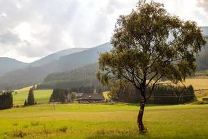 uma típica pequena aldeia austríaca no sopé das montanhas alpinas. foto