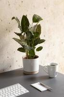 o design minimalista da mesa de trabalho doméstica foto