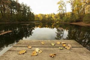 a bela paisagem pacífica luz do dia foto
