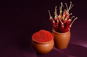 pó frio com frio vermelho em potes de barro, pimenta malagueta seca em fundo escuro foto