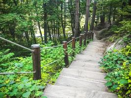 escada que desce na floresta. cidade sokcho. Coreia do Sul foto
