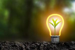 Ilustração 3D do conceito de energia renovável foto