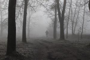 transeunte solitário em um parque nublado de outono. a estrada para o desconhecido. paisagem mística. foto