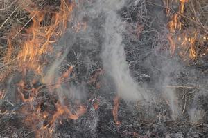 fumaça cinza durante um close-up de incêndio. foto