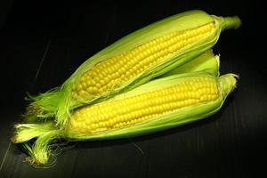 milho maduro em um fundo preto foto