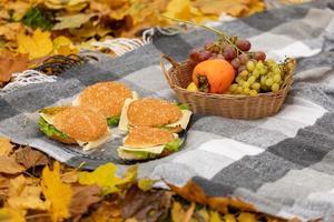 piquenique de outono na floresta, o cobertor encontra-se sobre as folhas amarelas caídas. frutas na cesta e hambúrgueres foto