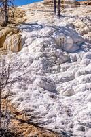 terraços de travertino, fontes termais gigantescas, yellowstone foto