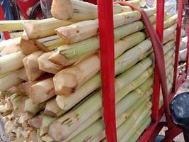 caldo de cana-de-açúcar saboroso e saudável foto