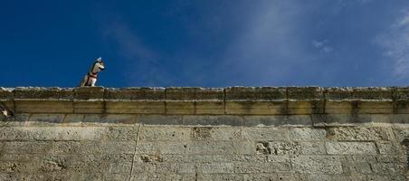 cão husky escalado na parede de pedra da antiga forja real real forjada, na província marítima de Charente, França foto