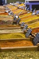 pó de especiarias coloridas foto