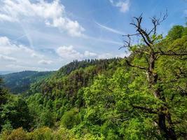 paisagens deslumbrantes dos vosges na França foto