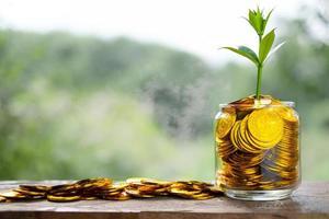 árvore com crescimento em cofrinho de vidro de pilha de moedas de ouro foto
