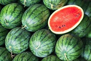 muitas melancias verdes grandes foto