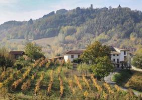 vinhas e campos do interior do Piemonte, Itália foto