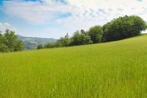 paisagem natural com lindas colinas verdes foto