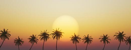 pôr do sol tropical com palmeiras foto