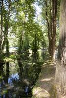 rio da província de scheggino de perugia foto