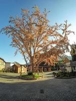árvore da páscoa em pomerode, santa catarina brasil - 5 de maio de 2019 foto