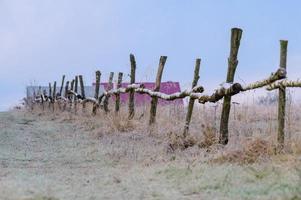 perspectiva de uma cerca de madeira na zona rural, campos. foto