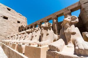 estátuas antigas de muitas ovelhas no templo Karnak de luxo foto