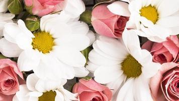 plano horizontal lindamente florido com flores rosas coloridas foto