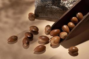 o arranjo natural de sementes de argan foto