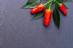 pimenta pimenta vermelha vegetal picante foto