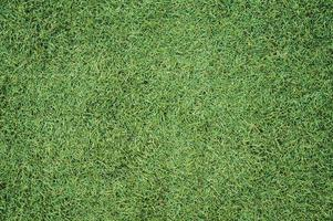 textura de grama artificial foto