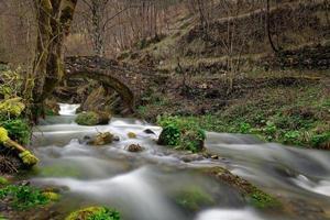 antiga ponte de pedra sobre o vale na floresta foto