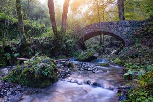 pequena ponte antiga de rochas em um riacho na floresta foto