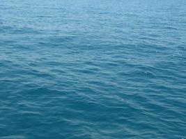 mostra a espuma da onda do mar, lagoa de vida selvagem, praia foto