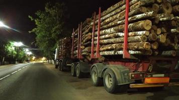 caminhão de madeira carregado com toras. um veículo pesado com foto