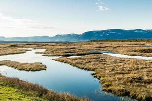 beira da estrada. parque nacional gros morne, newfoundland, canadá foto