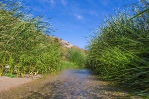 rio arábico em taif, saudiarabia foto