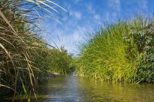 lindo vale do rio localizado em al taif, arabi saudita foto
