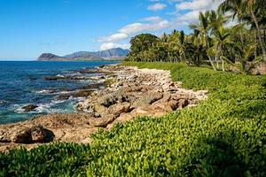 ilhas tropicais havaianas foto